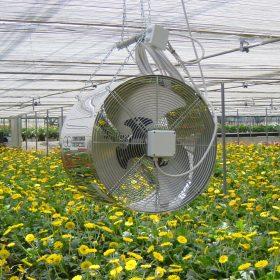 راهنمای خرید خنک کننده و تهویه برای گلخان